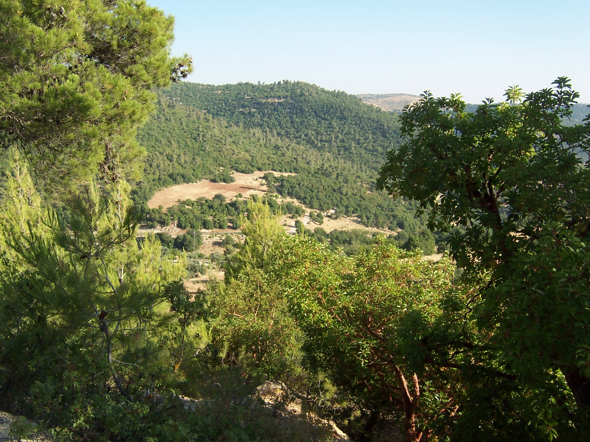 Мухафаза Аджлун (Ajloun Governorate), Иордания